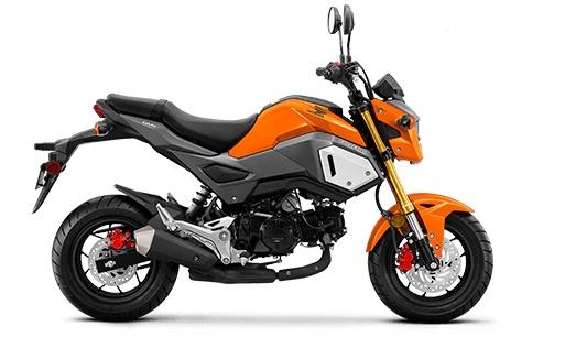 2020 honda grom beginner motorcyclew